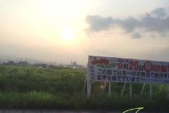 umetsu_112_imo