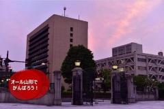 umetsu_ganbappe081_twilight