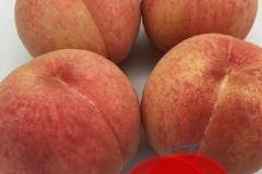 umetsu_ganbappe084_peach