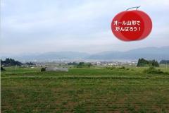 umetsu_ganbappe32_den-en
