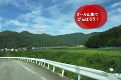 umetsu_ganbappe47_curve