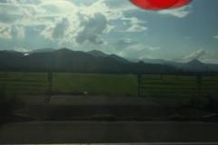 umetsu_ganbappe49_road