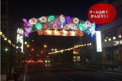 umetsu_ganbappe67_hanagasa