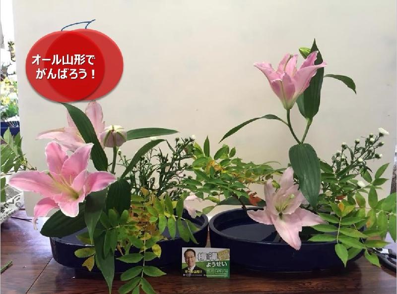 umetsu_ganbappe102_flower