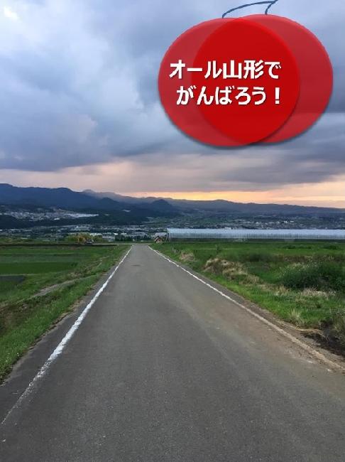 umetsu_ganbappe12_road2