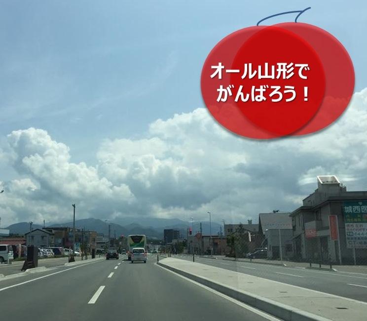 umetsu_ganbappe13_road3