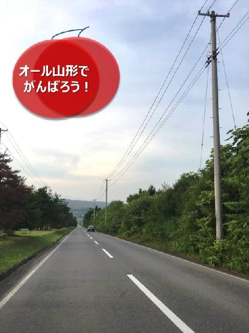umetsu_ganbappe30_road
