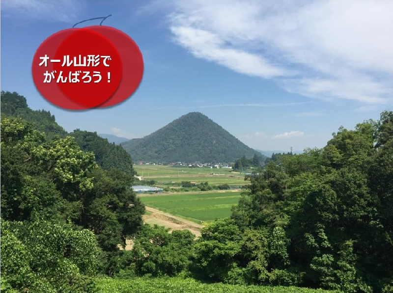 umetsu_ganbappe36_togamiyama