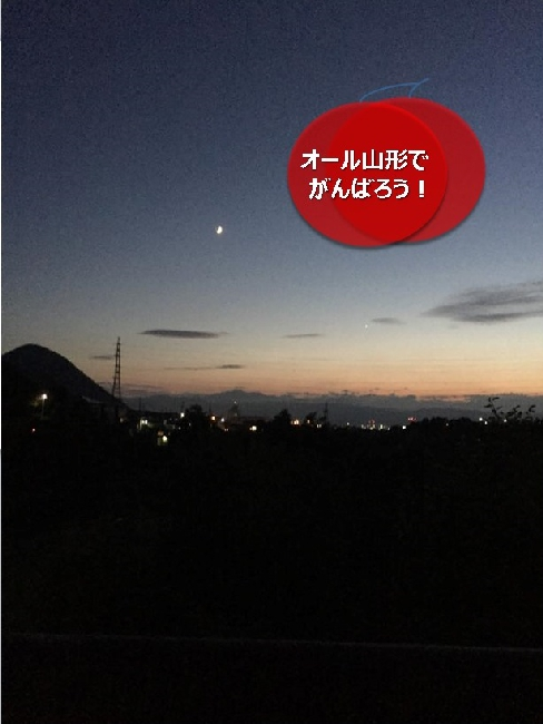 umetsu_ganbappe51night01_road