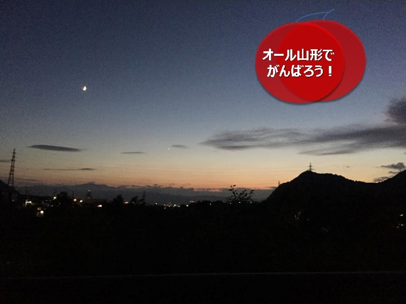 umetsu_ganbappe54night04_road