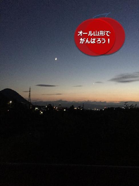 umetsu_ganbappe56night06_night